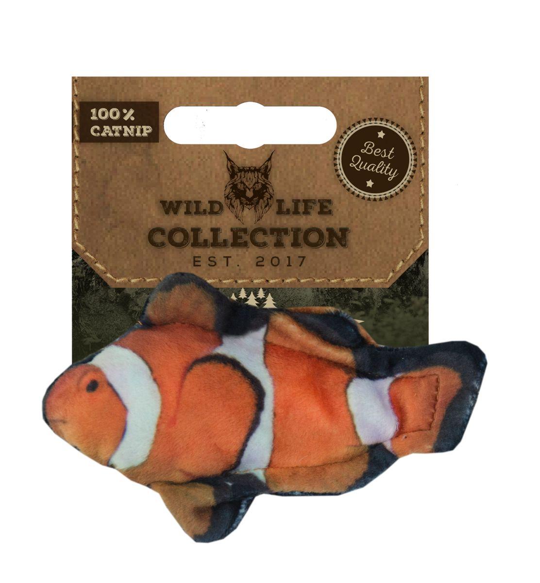 Katteleke  Wild life cat clownfish