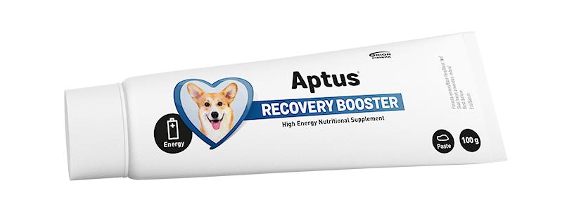 APTUS Reconvalescent Dog 100g
